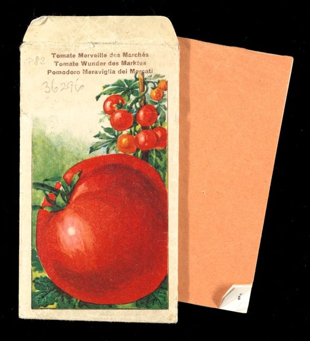 Packet showing illustration of tomatoes growing on the vine