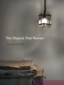 Book cover for the book The Objects That Remain