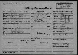 A report card from the International Tracing Service archive