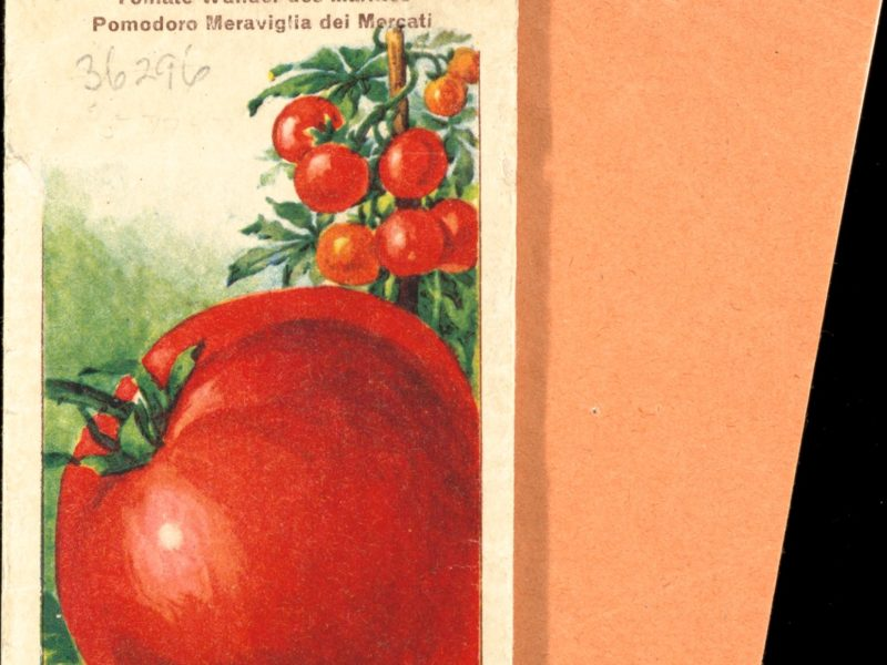 Old fashioned tomato seed packet